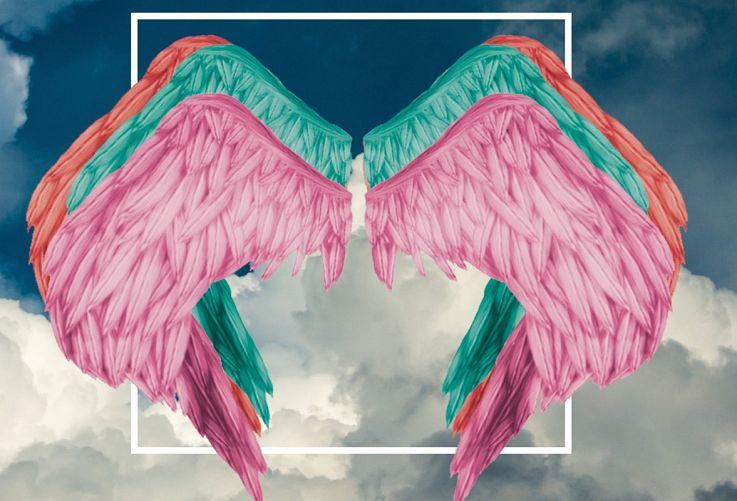 angeli_a terra_facebook